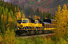 The pride of the Alaska Railroad fleet is southbound at Cantwell, AK during prime fall colors season, which happens to be early September. Fall comes early in Alaska.